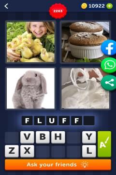 4 Pics 1 Word level 2263