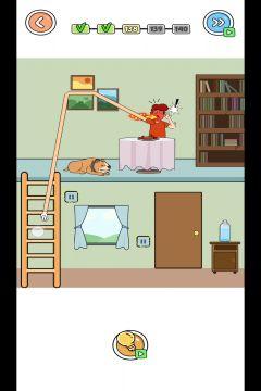 Thief Puzzle 4 level 138