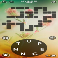 Wordscapes level 4920