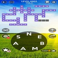 Wordscapes level 8803