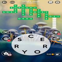 Wordscapes level 8854